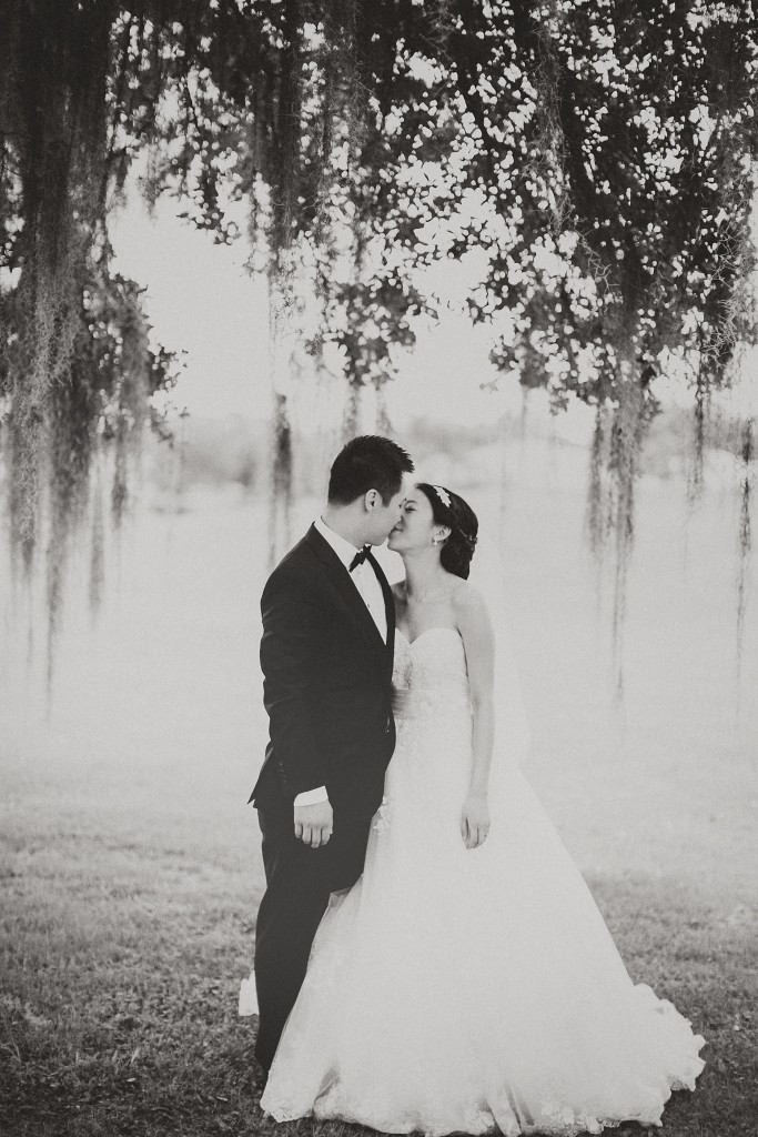 nicholas-lau-nicholau-weddings-london-film-photography-beautiful-pretty-blog-florida-wedding-love-cute-white-dress-chinese-korean-asian-black-and-white-under-the-willow-tree-spanish-moss-kissing