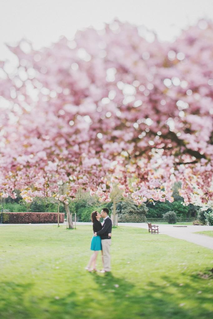 nicholas-lau-nicholau-engagement-spring-photography-peony-and-mockingbird-chinese-couple-battersea-park-westminster-something-blue-cherry-blossum-kissing-under-the-tree