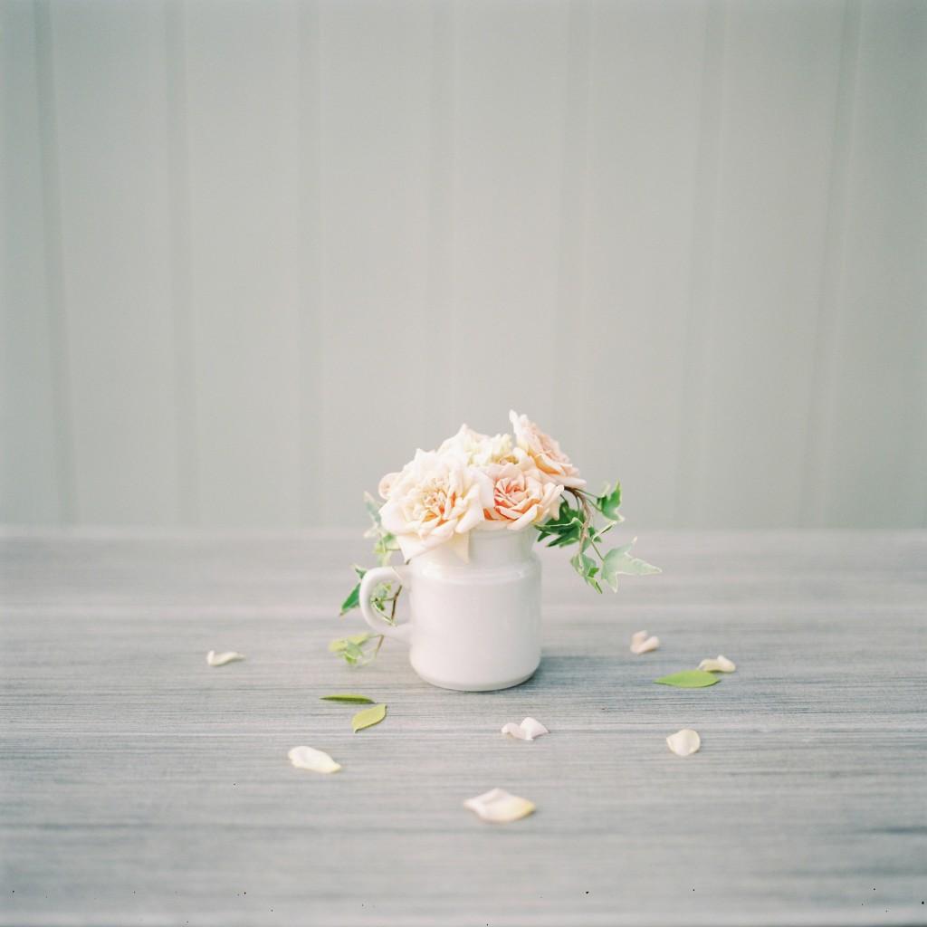 nicholas-lau-meghan-page-hasselblad-503cw-rustic-roses-ivy-creamer-creamy-boise-idaho-fuji-film-400h-uk-film-lab-photography
