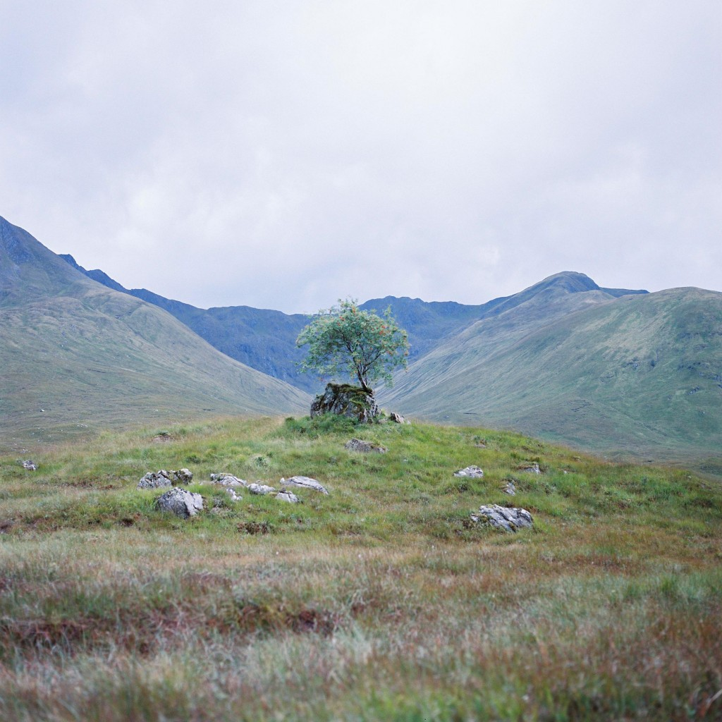 nicholas-lau_-scotland-96