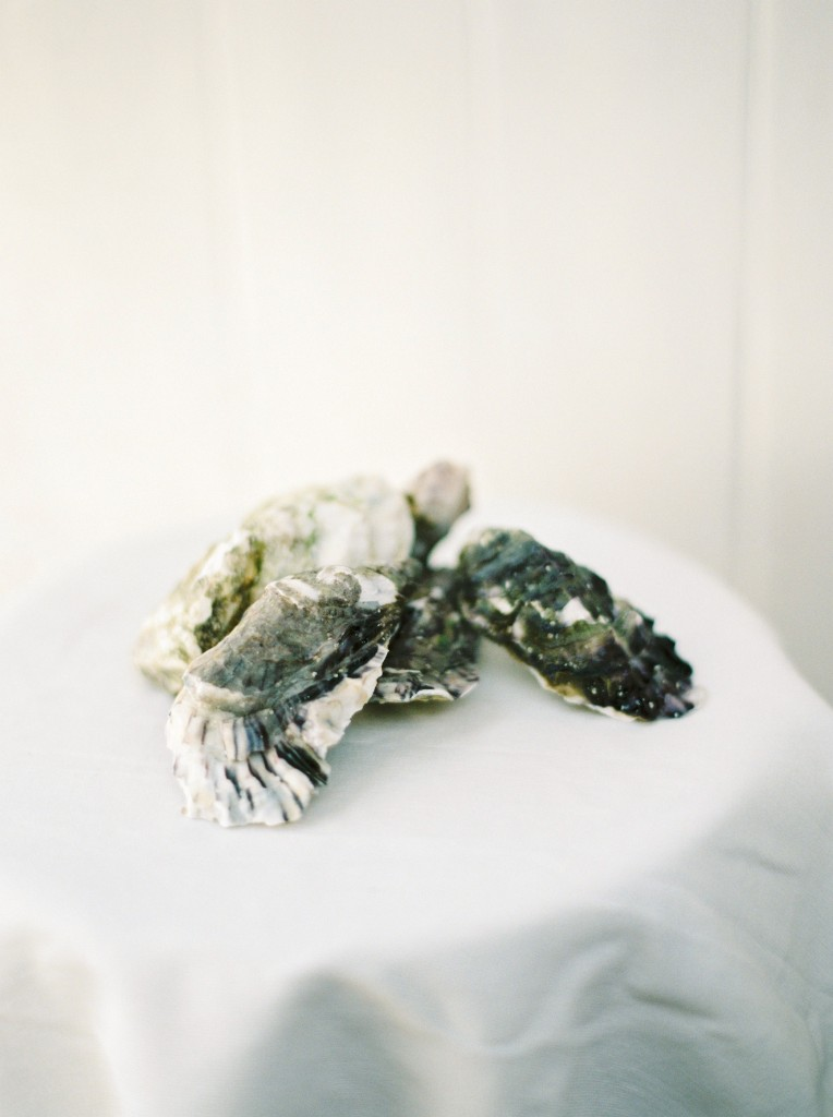 nicholas-lau-photo-photography-oyster-oysters-fruit-de-mer-seafood-lifestyle-film-fuji-contax-645-billingsgate-london-market-maldon-piled-stacked-beautiful-detail