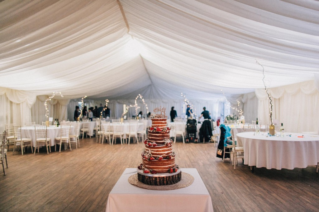 nicholas-lau-wedding-photo-photography-london-uk-ethnic-indian-black-multicultural-beautiful-summer-spring-cherry-blossoms-elegant-gilwell-park-cake-venue